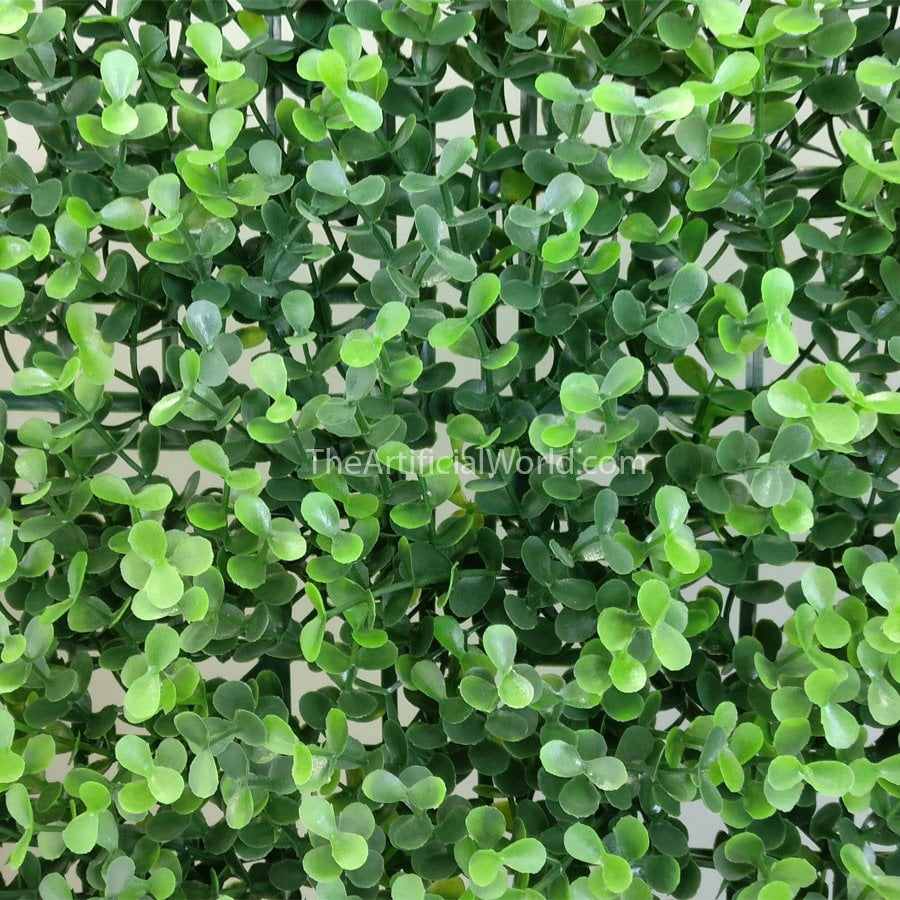 Myrtle Greenery Artificial Hedges Green Walls The