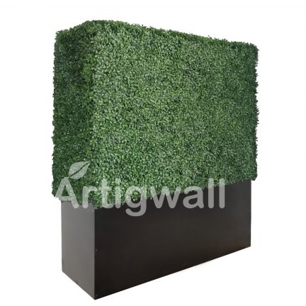 48 inches boxwood hedge