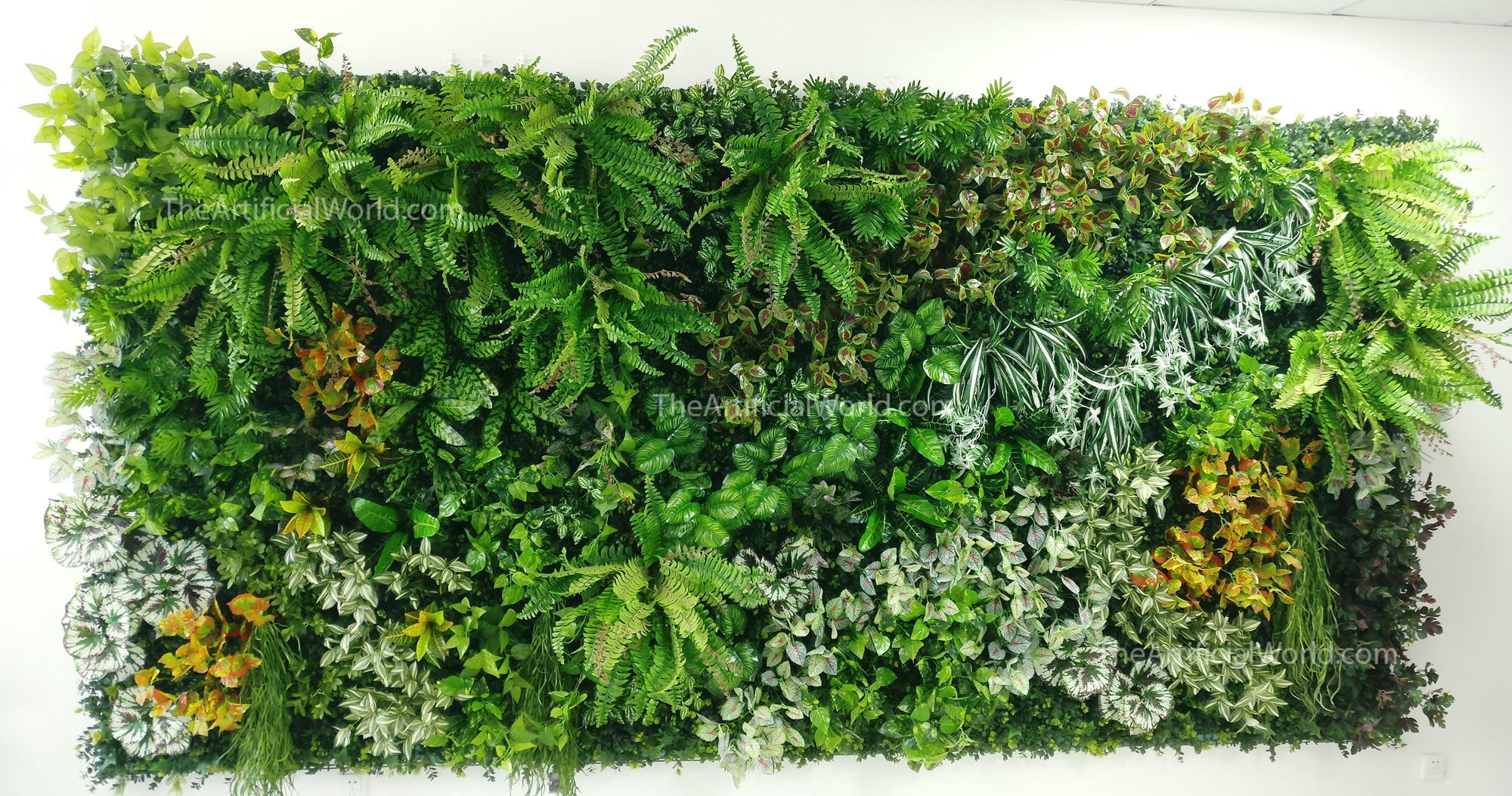 Blanket plant wall artificial hedges green walls the for Green plants for garden