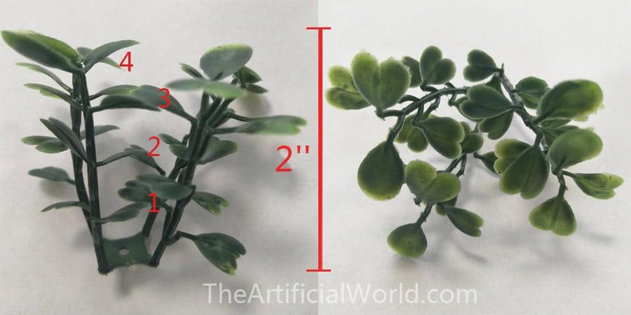 comparison of leaf-layer