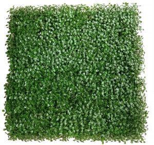 light green boxwood panel