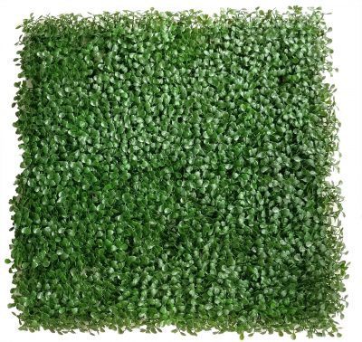 light green boxwood panel