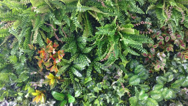 faux living wall-5