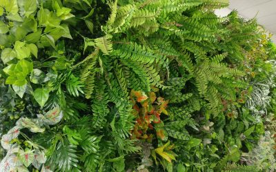 faux living wall-4