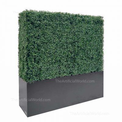 48 inches boxwood hedge
