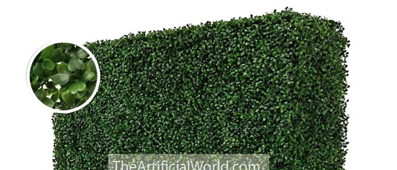 hedge-detail