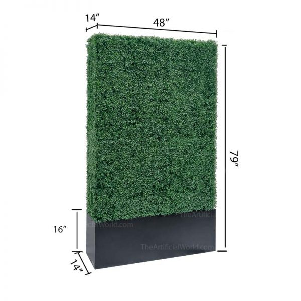 79 inches hedge with size