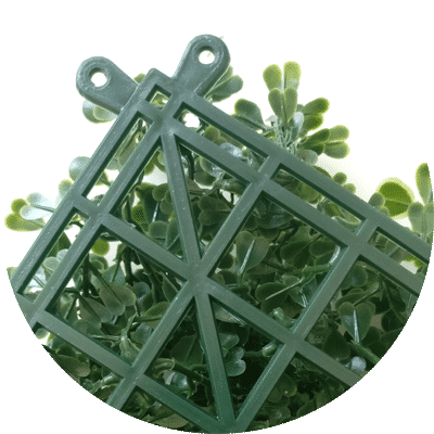 frame of boxwood panels
