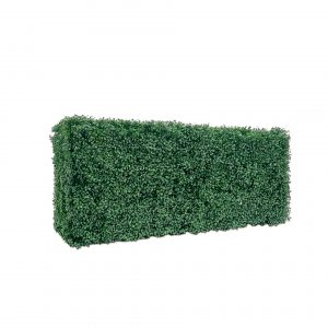 boxwood hedge wall backdrop