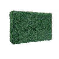 boxwood hedge wall no base