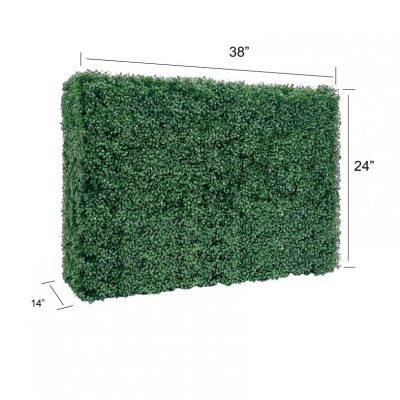 38_24 hedge