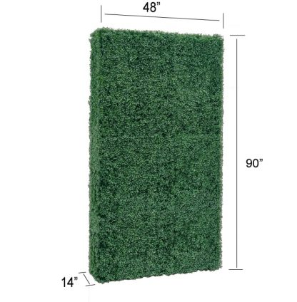 boxwood hedge wall backdrop 76 with size