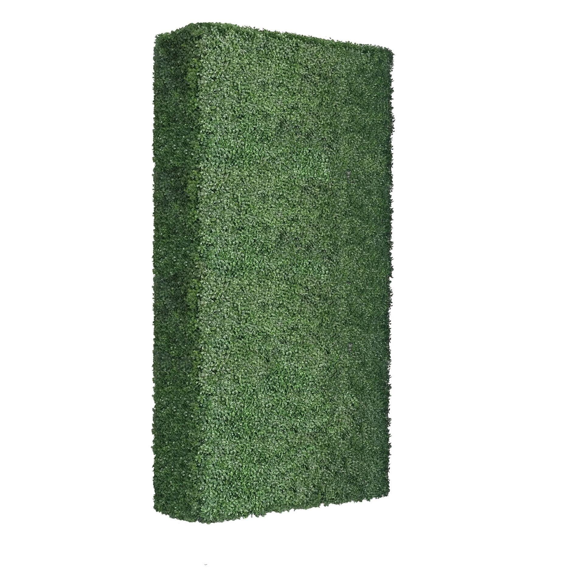 boxwood hedge 90 inches