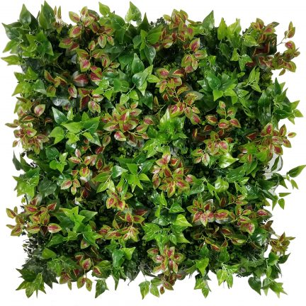 golden pothos living wall