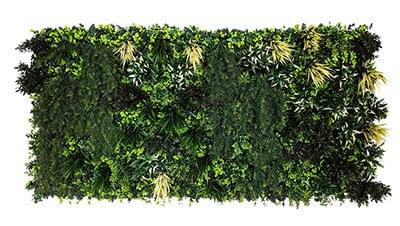 fall down plant wall