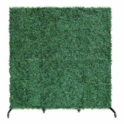 boxwood backdrop 2 in 1