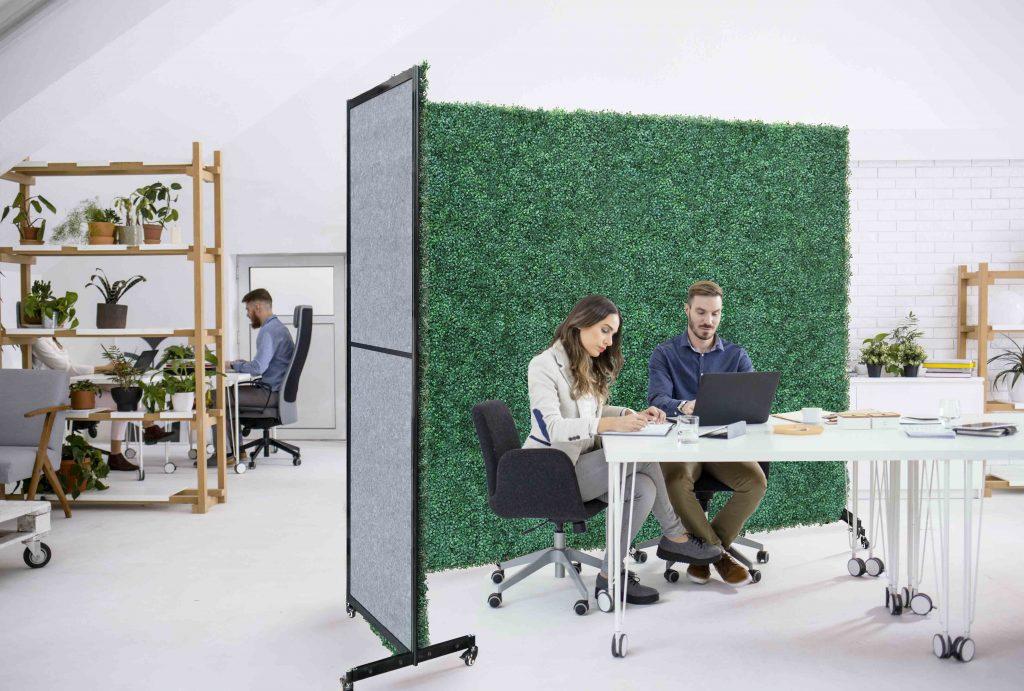 boxwood backdrop divider