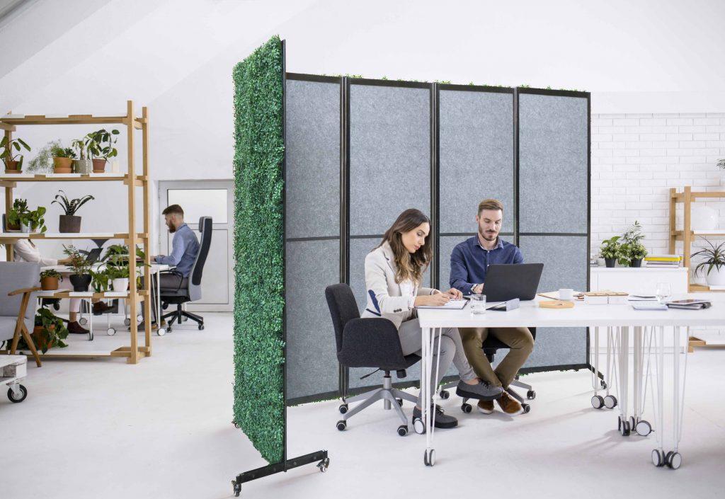 boxwood backdrop divider -2